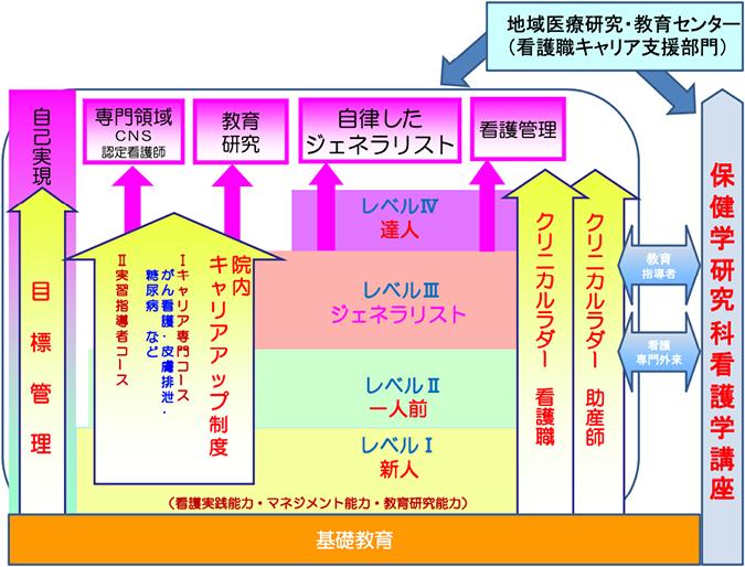 キャリアパス概念図